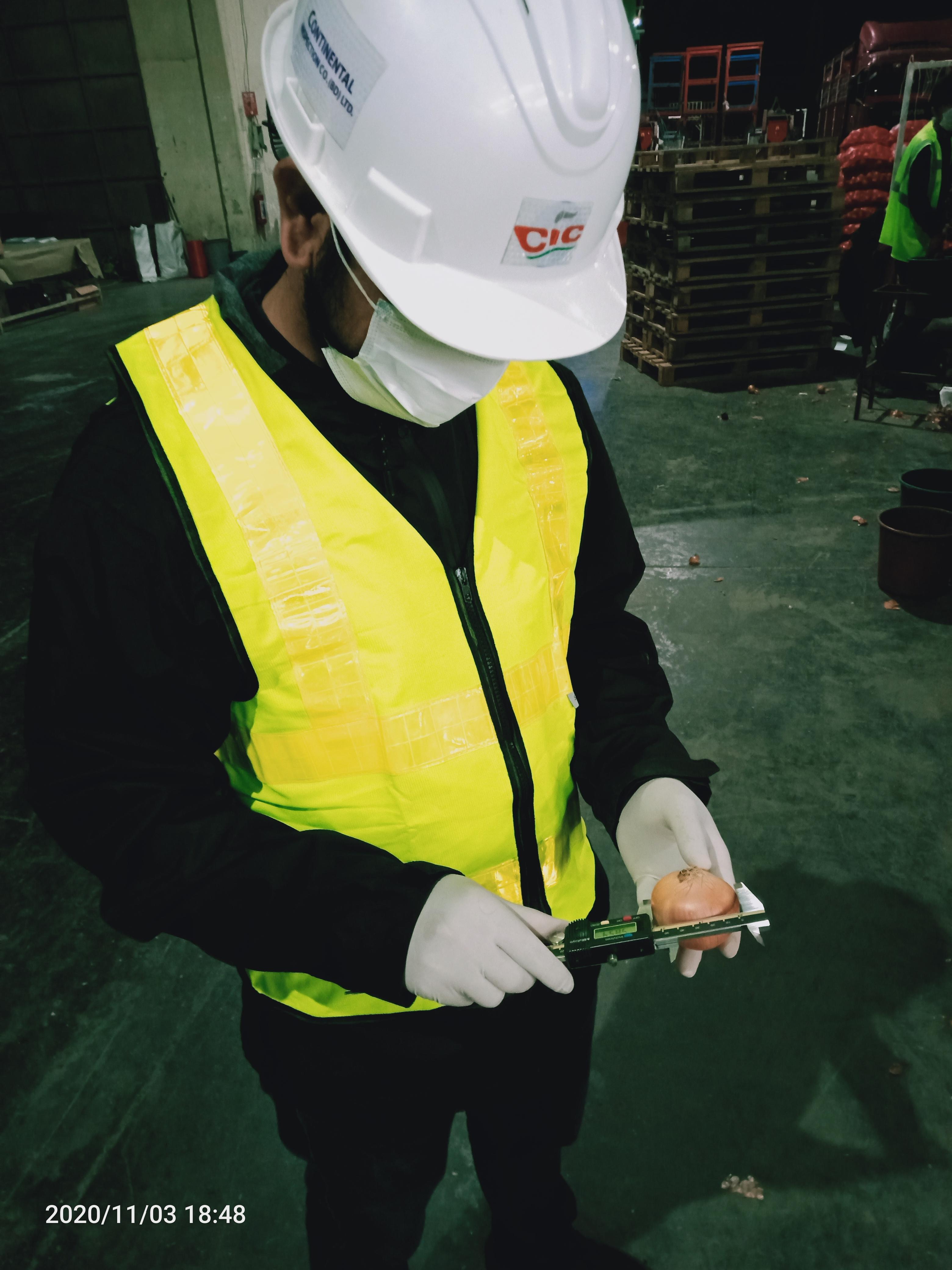 Food Grain Inspection
